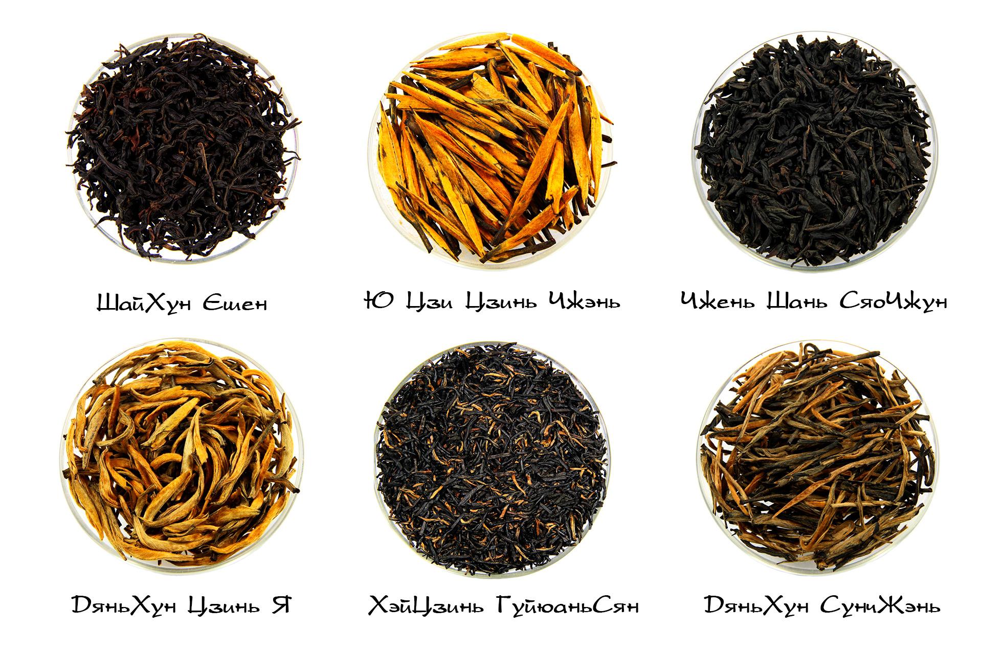 Красный Чай. Разновидности, производство, заваривание и эффект. 1