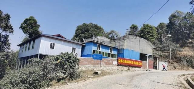 фабрика чай пуэр буланшань